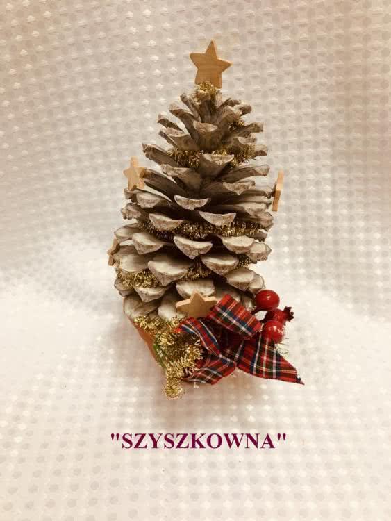 10 Szyszkowna.jpg