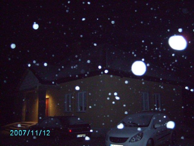 w śniegu.JPG