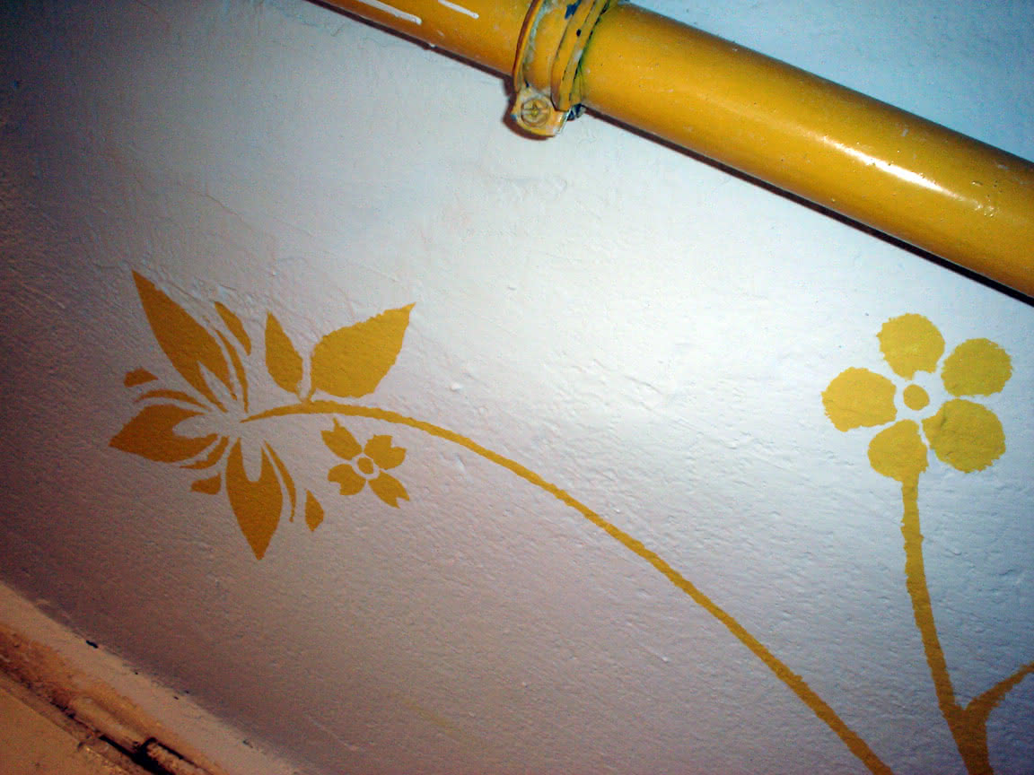 żółte kwiati
