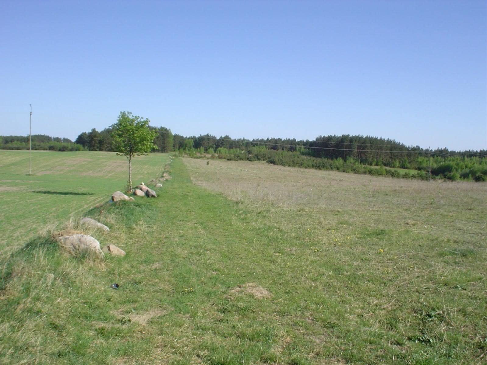 początki na 6 hektarach