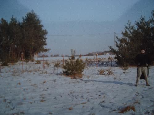 004 DSC00875 pole zima.JPG