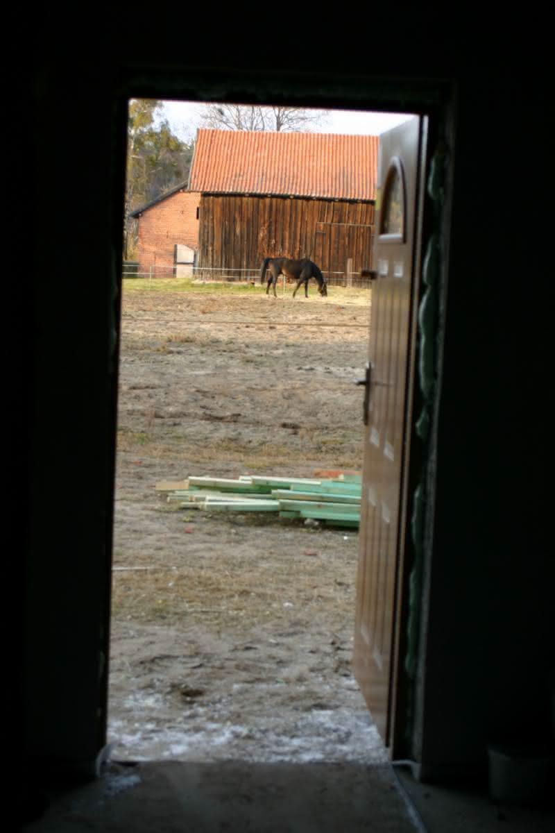 01.11.2010 darmowa kosiarka za płotem :)