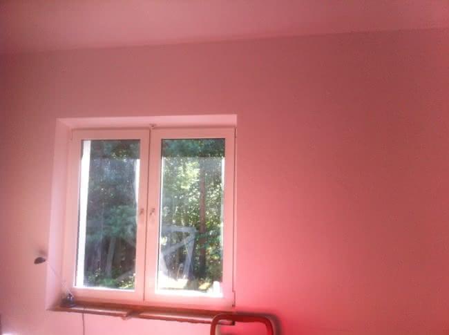 bibl-pink.jpg