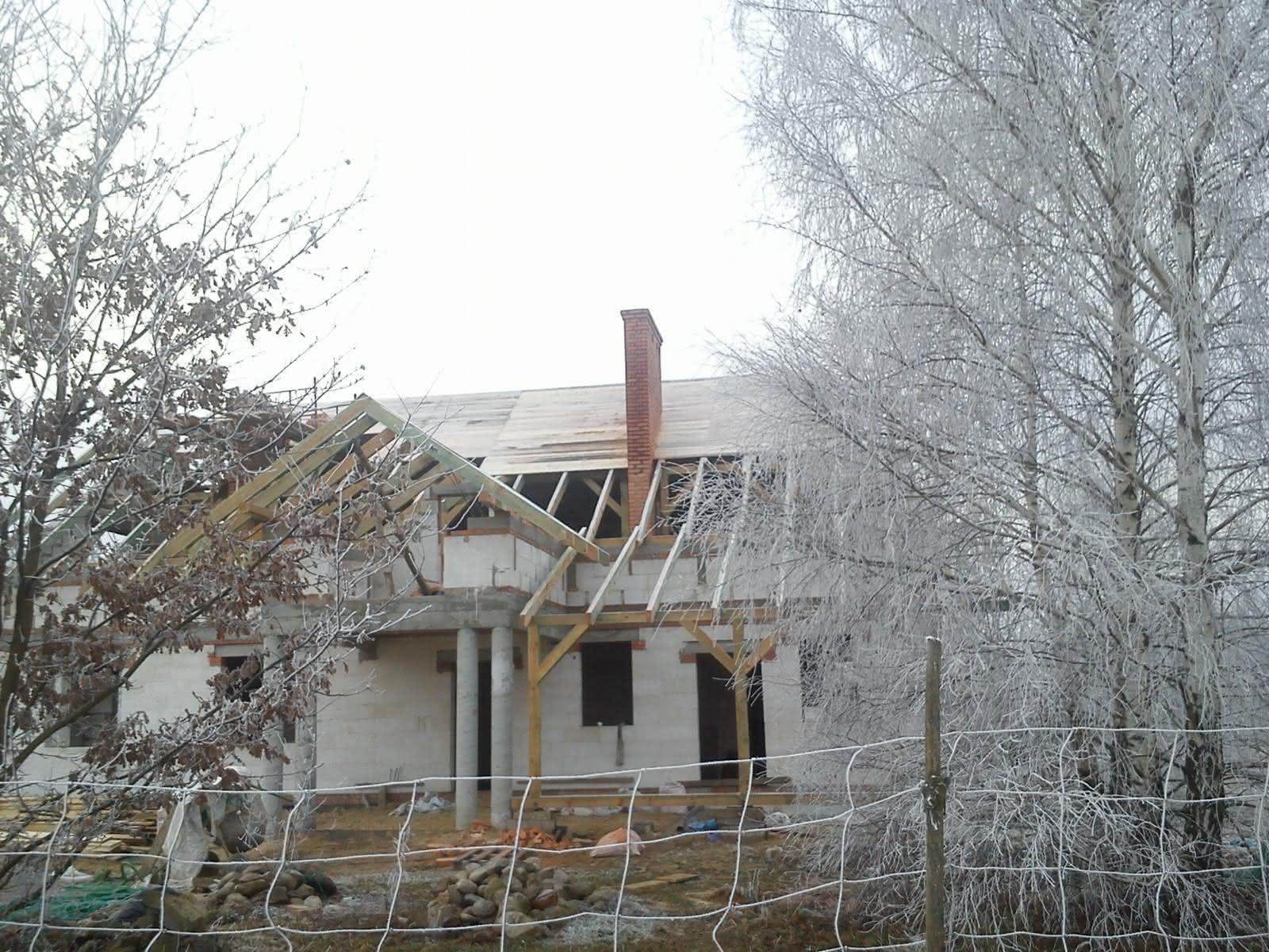 brzozy i kominy zimą