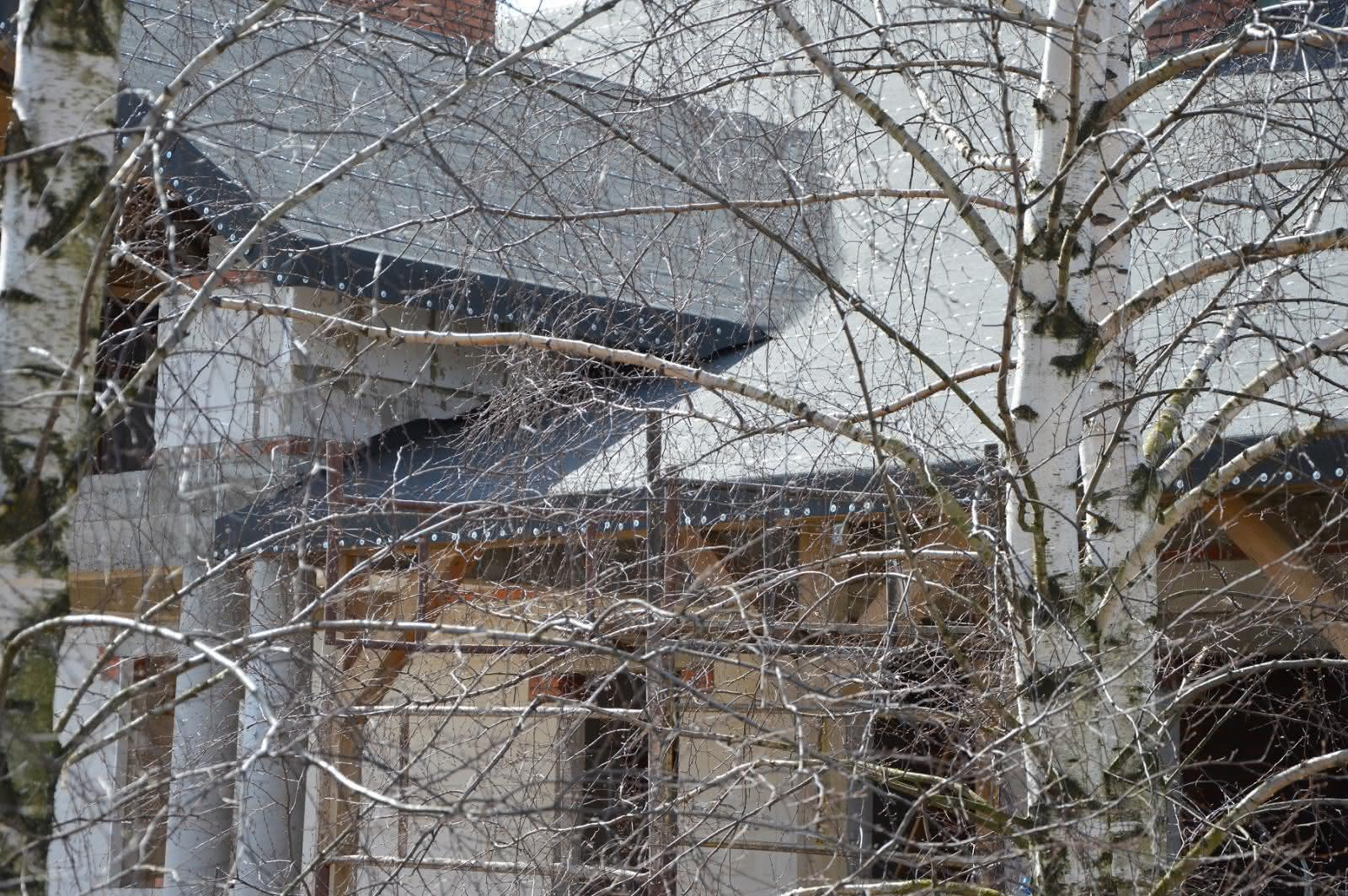 dom w brzozach