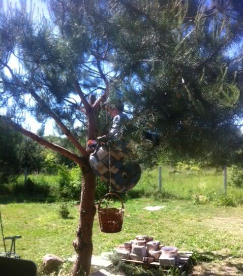 winda_na_drzewo.jpg