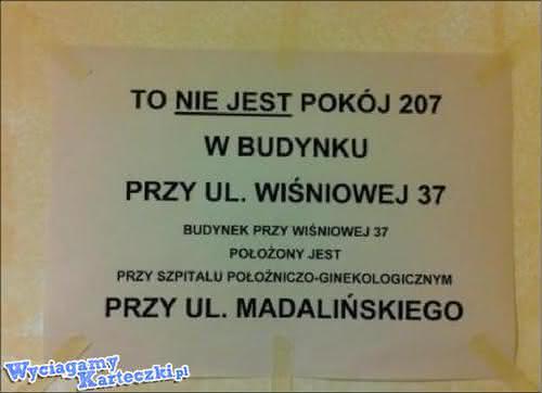 1335260970_by_ZivaAbby_500.jpg