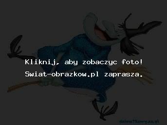 wesola_wiedzma_obrazki_czarownice_wiedzmy.jpg