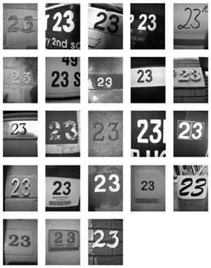 zd5.jpg
